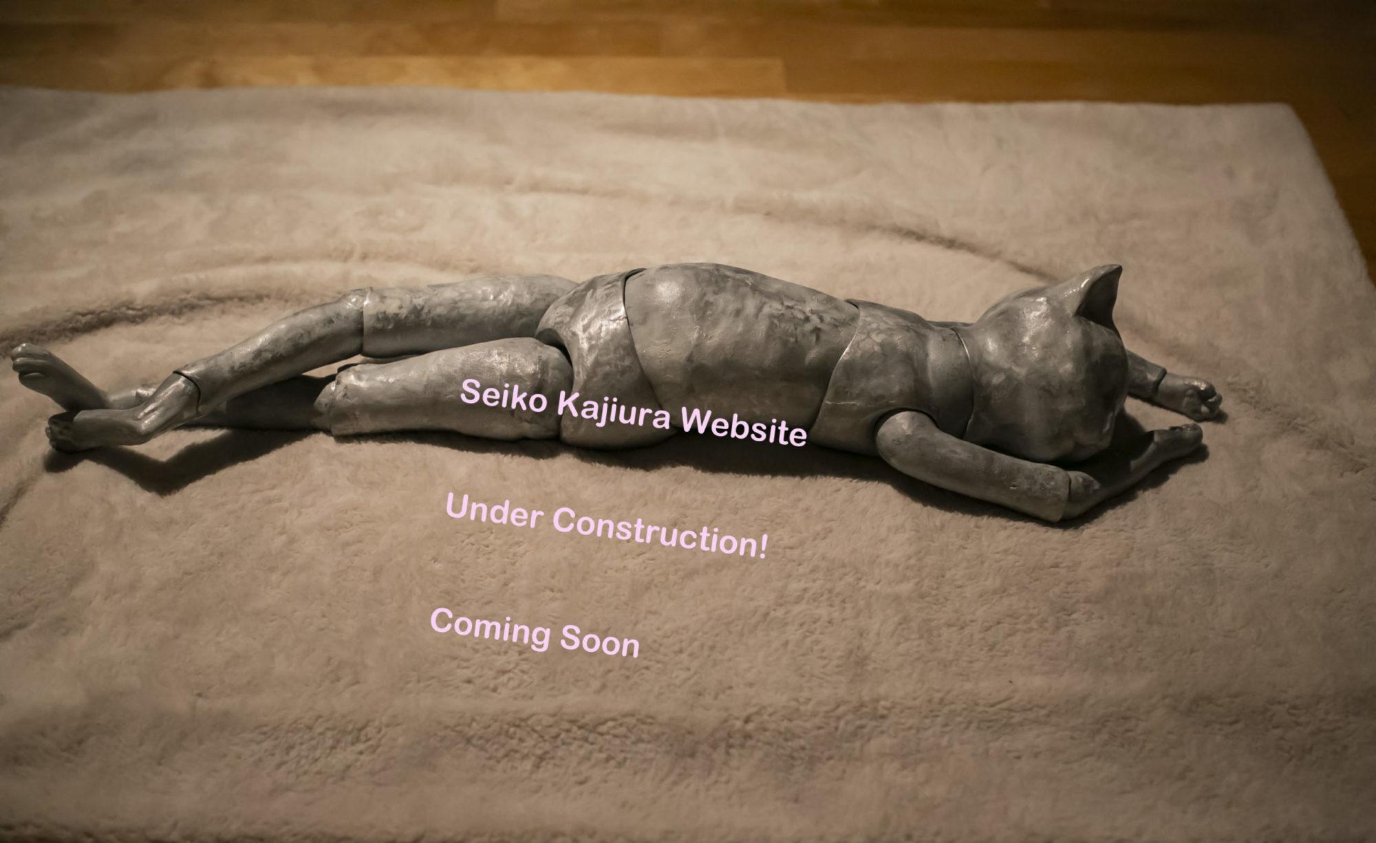 Seiko kajiura